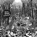 Großstadtmärchen (Lp+Mp3) [Vinyl LP]