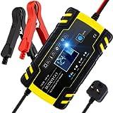 BUDDYGO Caricabatteria Auto Moto, 8A 12V/24V Carica Batteria con Schermo LCD Intelligente Automatico Caricabatteria…