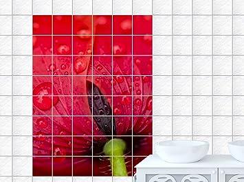 Piastrelle adesivo piastrelle immagine fiore di papavero piena di