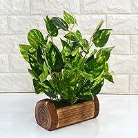 Fancy Mart Artificial Plants/Flowers with Wooden Pot (Green, 1 Piece)