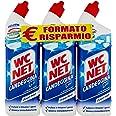 Wc Net Candeggina Gel Profumata, Detergente per Sanitari e Superfici, Fragranza Ocean Fresh, 700 ml x 3 Confezioni