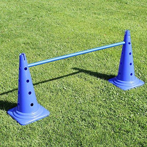 Preisvergleich Produktbild Kombi-Kegelhürde 50 in 4 Farben,  mit Stange 100 cm,  für Agility - Hundetraining (blau)