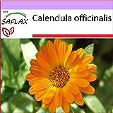 SAFLAX - Calendula - 50 semi - Calendula officinalis