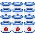 VI Lot de 12 cartouches filtrantes de rechange pour piscine, pompe de filtration de type VI pour Lay-Z-Spa Miami, Vegas, Mona