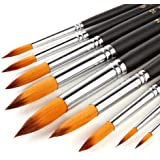 WLOT pennelli per Pittura Forniture Art Olio, Acrilico, Acquerello,9 Pezzi.