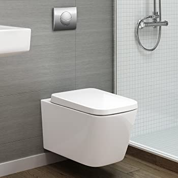Rak Resort Rimless Wall Hung Toilet Pan With Concealed