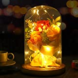 Shangcer La Bella y La Bestia Rosa, Rosa Encantada Cúpula Cristal con Luces LED Base Madera Regalo para Día de Madre Cumpleañ