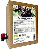 BIO Holunder Muttersaft 3 Liter