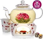 Teabloom Teekanne Cherry Blossom & Blütentee Geschenk Set (6 tlg.) - Herdplattensichere Glasteekanne (800 ml), Porzellandeckel, Teekannenwärmer, Porzellan-Tee-Ei für losen Tee + 2 Gourmet Blütentees