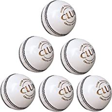 PSE Priya Sports Leather Club Cricket Ball White Pack of 6 (4Part)