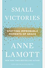 Small Victories: Spotting Improbable Moments of Grace Hardcover