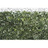 VERDELOOK Sempreverde® Point Siepe Artificiale 1.5x3 m, Foglia edera, Decorazioni Giardino