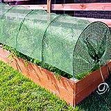 Serre de jardin casa pura® Floris   tunnel pour plantes, stabilisé UV, résistant aux intempéries   avec châssis en métal   taille 300x65x45cm
