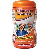 Baidyanath Nagpur Chyawan-Fit Sugarfree (1 Kg)