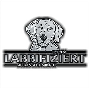Siviwonder Auto Aufkleber Labrador Labbifiziert Hund Infiziert Hundeaufkleber 30cm Silber Metallic Auto