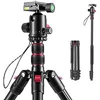 ROXTAK Trepied Appareil Photo Monopode en Aluminium 200cm avec Rotule Panoramique 360° pour Camera Camescopes Charge…