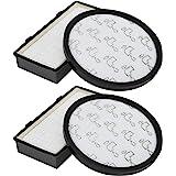 Filtri HEPA Pour Aspirateur Cyclonique X-Trem Power (RO69 X X), (Comparer R006001), Pack de 2