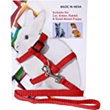 Pedigone Dog Belt Combo of Rabbit Harness with Leash Specially for Rabbit, Small Dogs, Puppies, Cat & Kitten Rabbit Harness L