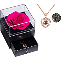 Erhaltene echte Rose Ewige handgemachte erhaltene Rose mit Liebe Sie Halskette, verzauberte echte Rose Blume zum…