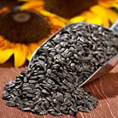 Clay Arts Foods Raw Black Sunflower Seeds Ozonated/Dehydrated (500 Gr)