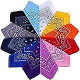 Anpro 12 Pezzi Bandane Multicolori per Cappelli,Bandana per Capelli, Collo,Testa,Sciarpa Fazzoletti da Taschino,Disegno Paisl