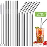 12 Pcs Stainless Steel Straws,Reusable Metal Drinking Straws with 2 Cleaning Brush for Smoothie, Milkshake, Cocktail and Hot Drinks