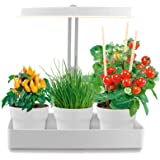 Northpoint LED Pflanzenleuchte Kräutergarten Innengarten Gewächslampe 22W 1350 Lumen 10 Setzlinge Höhenverstellbar Wasserstandsanzeige Timer