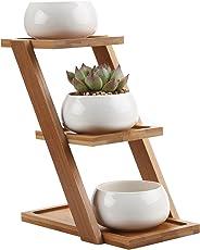 T4U Recheckig Keramik Sukkulenten Töpfe Kaktus Pflanze Töpfe klein Blumentöpfe mit Bambusuntersetzer Weiß