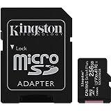 Kingston Canvas Select Plus Tarjeta microSD, SDCS2/256GB Class 10 con Adaptador SD