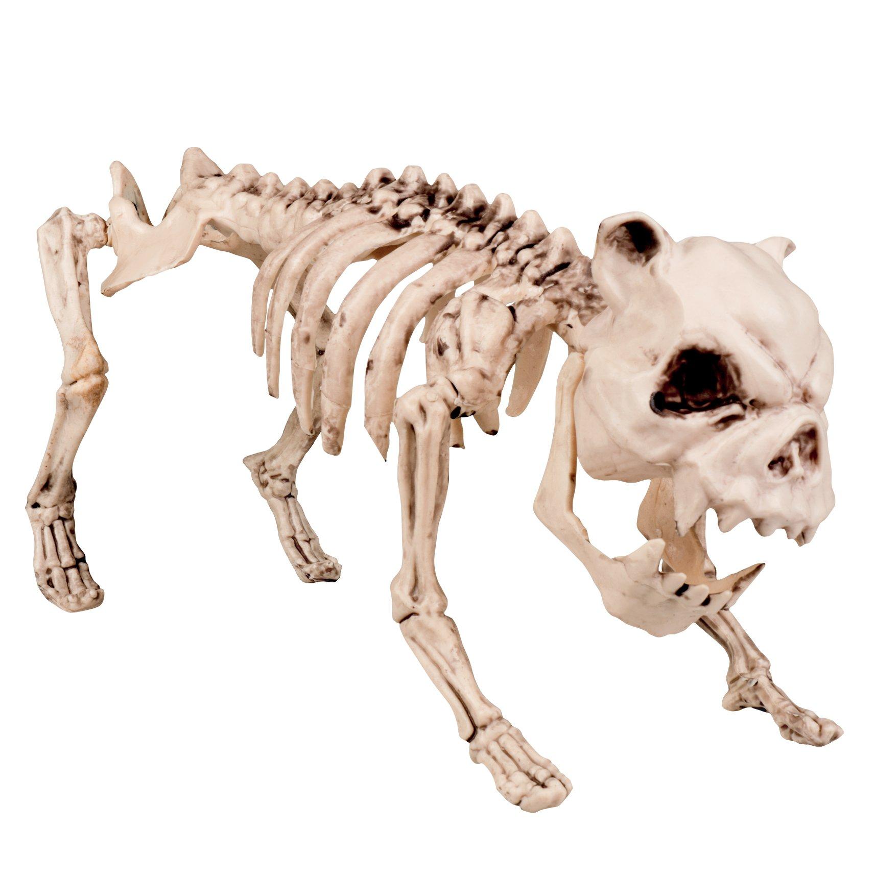 Boland 72095 - Deko-Figur Hundeskelett, Sonstige Spielwaren
