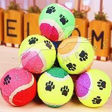 Pet Dogs Puppy Toy Tennis Balls Run Petch Throw Dog Cat Play Chew Bite Training Bright Coloured