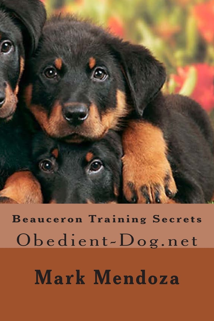 Beauceron Training Secrets: Obedient-Dog.net
