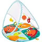 Fisher Price Fold & Go Portable Gym, fold and fits into a Diaper Bag!