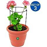 TrustBasket Garden Trellis Plant Support (Set of 3)