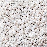 LIHAO Piedra Decorativa Jardín Blanca Grava Blanca para Jardín Jarrones Acuario Piedras Pequeñas (460G)