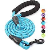 YOUSTYLO - YOU ARE PRIORITY 5 FT Strong Dog Leash with Comfortable Padded Handle and Highly Reflective Threads for Small Medi