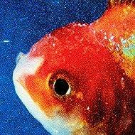 Big Fish Theory [Explicit]