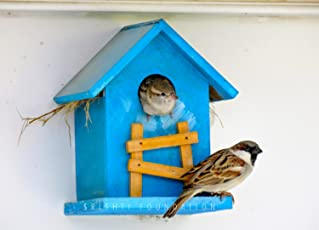 Srishti Rustic Bird House Blue