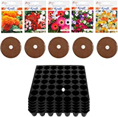 Seedling Tray (49 hole 5 pcs) and Agro Peat (100 gm 5 pcs) and African Marigold, Mesembryanthemum, Daisy, Nemesia, Petunia (50 seeds each 5 Pkt) By Kraft Seeds