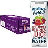 Radnor Hydrate 24x250ml Summer Berries Tetra Pak