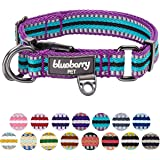 Blueberry Pet 3M Reflective Multi-colored Stripe Violet and Celeste Dog Collar, Small, Neck 30cm-40cm, Adjustable Collars for Dogs