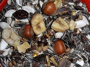 Arbrikadrex Eichhörnchenfutter Spezial Alleinfutter Eichhörnchen 2kg Premium Mischung Futterhaus