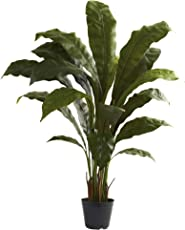 Nearly Natural 6739 Birdsnest Plant, 3.5-Feet, Green by Nearly Natural
