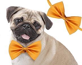 Sage Square Size Adjustable Bow Tie, Dog/Puppy/Cat/Kitten, Jumbo (Yellow)