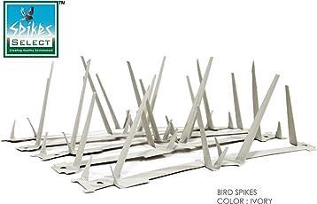 Select Spikes Steel Galvanized Single Sheet Polystyrene Powder Coated Bird Spikes (11 Ft 91 cms 12 Strips X 30 cms)