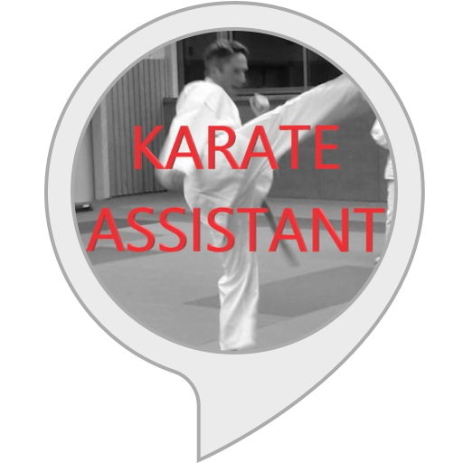 Karate assistant