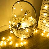 40 LED 16ft Cadena Luces, luz blanca cálida, Alimentado por batería, Resistente al agua, Fulighture Decorativas Guirnaldas Lu