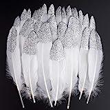 ganzenveren, 40 stuks, zilverkleurig, waterdicht, natuurlijk, hanenveren, knutselwerk, decoratie voor kostuums, doe-het-zelve