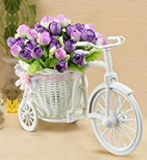 Sky Trends Flower Cycle Red White Flower Plastic Basket Cycle With Artificial Flower & Plant Showpiece Gift Set