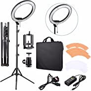 EACHSHOT ES240 Kit {Including Light, Stand, Phone Clamp, Tripod Head }240 LED 18